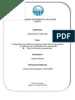 Introduccion trabajo final capacitacion y desarrollo.docx