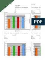 Identificacion de Los Estilos de Aprendizajes Del Grupo de Aprendices