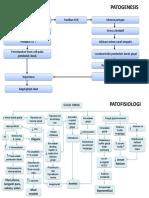 Patogenesis Dan Patofisiologi Gagal Ginjal