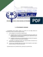 PROCEDIMIENTOS EN EL CODIGO NACIONAL DE PROCEDIMIENTOS PENALES.docx