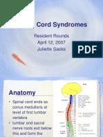 2009 04 09-Sacks-Spinal Cord Syndromes