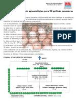modelo_agroecologica_p_50_ponedoras.pdf