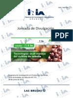 Inia - Cebollas - Investigacion Sad 775