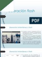 Liberacion Flash