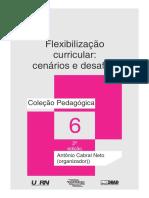 Flexibilizao.pdf