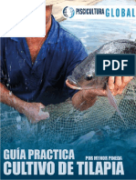 GUIA+PRACTICA+PARA+EL+CULTIVO+DE+TILAPIA
