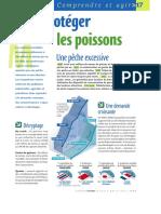 Infographie Carrefour - Protéger Les Poissons - Octobre 2004