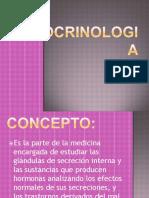 endocrinologia-100412182244-phpapp02