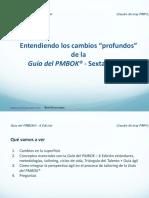 PMBook Guía Internacional Para Gestión de Proyectos. 6. Edición