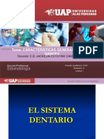 anatomia dental y oclusion