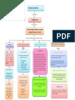 mapa conceptual psicologia evolutiva.docx