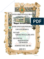 108118664-Informe-de-Practicas-Preprofesionales-Computacion-e-Informatica.pdf