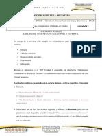 ACTIVIDAD · 1 COMPETENCIAS 2019.pdf