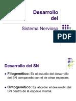 NeuroInf 2  Desarrollo.pdf