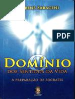 Saraceni - Dominio dos Sentidos da Vida- SQUEEZED.pdf