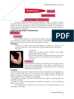 Lesiones Tendinosas Completo (1)