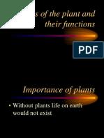 plant parts.ppt