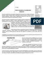 0_taller_de_educacin_fsica_-_flexibilidad_rcp (1)(1)(1)(1) (1)