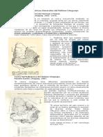 Caracteristicas_Generales_del_Relieve_Uruguayo.pdf