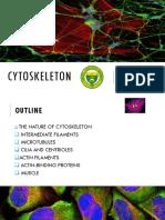 Cytoskeleton Jet