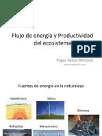 Flujo de Energía y Productividad Del Ecosistema