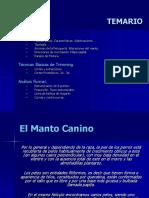 193377037-El-Manto-Canino-pdf.pdf