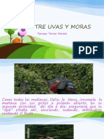 TORRES ENTRE UVAS Y MORAS.pptx