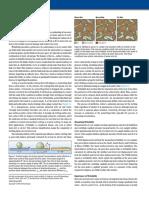 Defining-Wettability.pdf