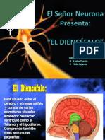 Sistema nervioso y otros