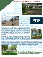La Importancia de Las Áreas Verdes en La Escuela