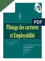 Pilotage Des Carrieres Employabilite