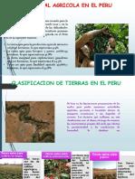 Potencial Agricola en El Peru