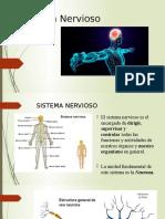 exposicion sistema nervioso.pptx