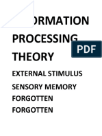 INFORMATION PROCESSING THEORY dom dom.docx
