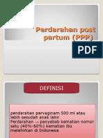 282458890-Perdarahan-Post-Partum-FIX.ppt