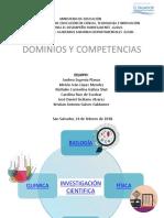 Presentación Dominios y Competencias (3)