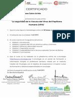 LA SEGURIDAD DE LA VACUNA DEL VPH_Certificado Español.pdf