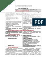 Dr Marilena Gilca_IndicatoriBoliRenale.pdf