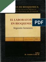 El Laboratorio de Bioquimica - Segundo Semestre