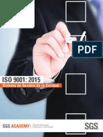 Normas ISO 9001_19011