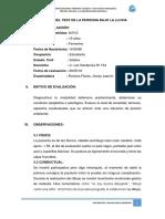 Informe-psicológico- Minimetal - Dfh - Familia