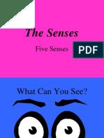 5_SENSES.ppt