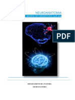 Manual de Neuroanatomía 2019