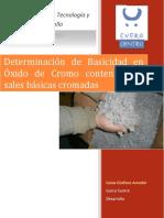 239460897-Determinacion-Basicidad.pdf