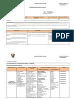 Programacion Curricular Anual 2014 2015 Para Llenar