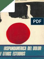 Hispanoamerica Del Dolor