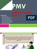 PMV Inicio y Forma de Nuestro Proyecto