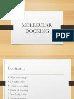 Docking and Scoring