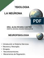 1. NEURONA FIS N 2019.ppt
