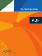 NAP_INICIAL.pdf
